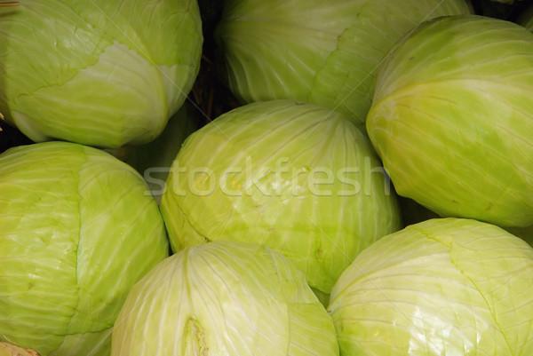 white cabbage 02 Stock photo © LianeM