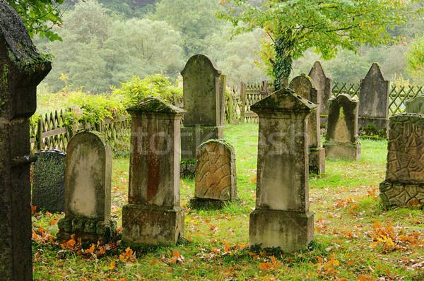 Temető 14 fa felirat szomorú halál Stock fotó © LianeM