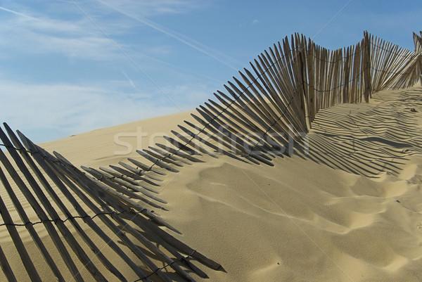 Dune du Pyla 08 Stock photo © LianeM