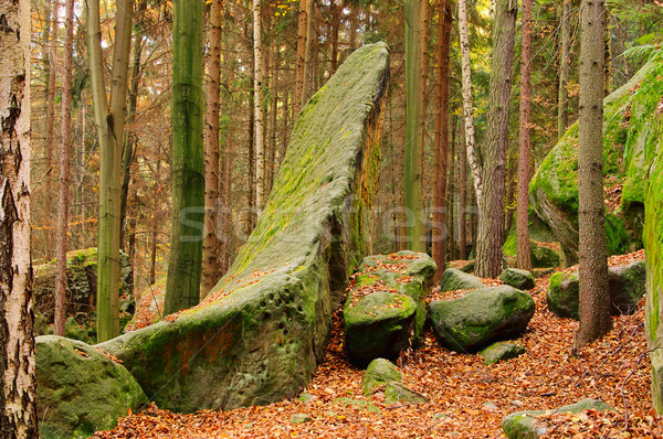 sandstone rock in forest 13 Stock photo © LianeM