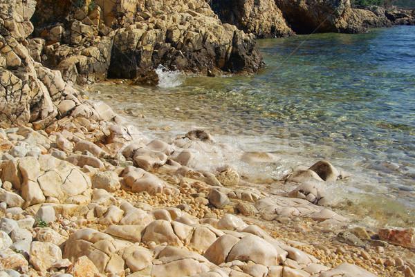 Praia 22 água fundo verão Foto stock © LianeM