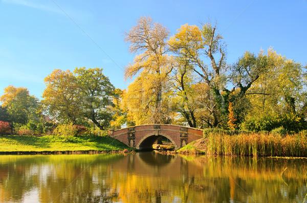 английский лист саду оранжевый моста озеро Сток-фото © LianeM
