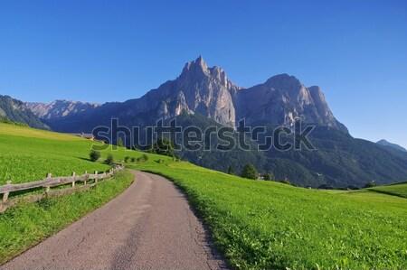 mountain Schlern in Dolomites Stock photo © LianeM