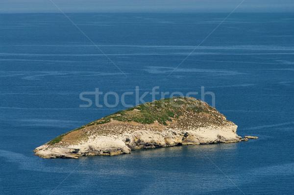 island 01 Stock photo © LianeM