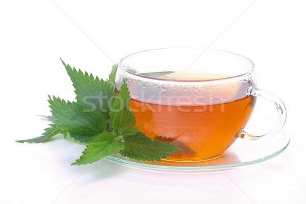tea nettle 04 Stock photo © LianeM