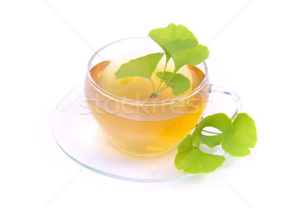 tea ginkgo 08 Stock photo © LianeM