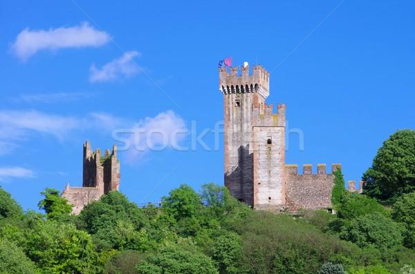 Castelo árvore tijolo torre medieval paredes Foto stock © LianeM
