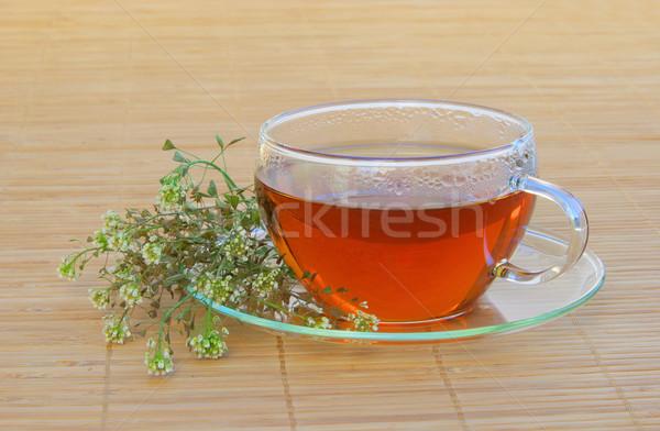 tea shepherds purse 03 Stock photo © LianeM