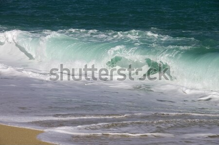 beach with waves  Stock photo © LianeM