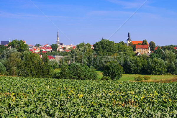 the town Frankenstein in Silesia Stock photo © LianeM