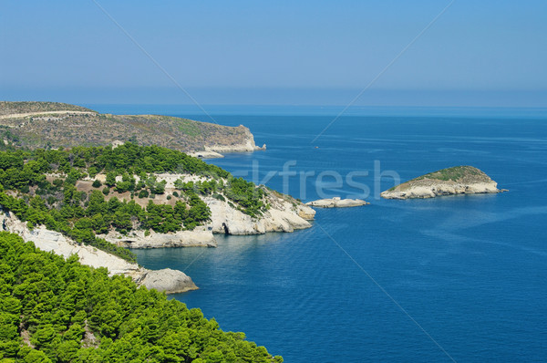 Gargano coast 05 Stock photo © LianeM