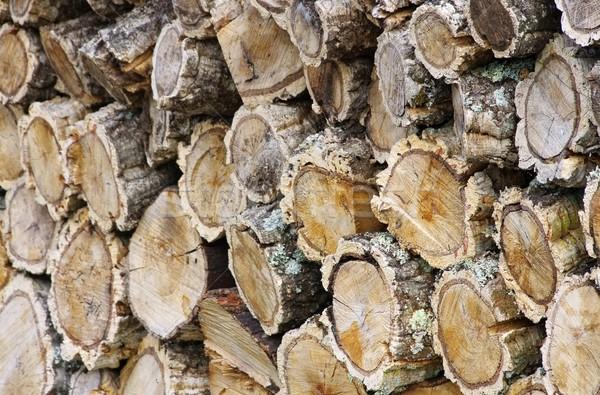 スタック 木材 コルク オーク ツリー 火災 ストックフォト © LianeM