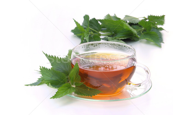 tea nettle 05 Stock photo © LianeM