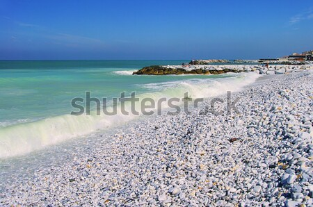 Pisa beach 02 Stock photo © LianeM