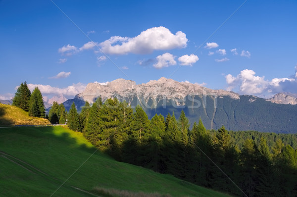 Stock photo: Cima di Undici and Val di Fassa
