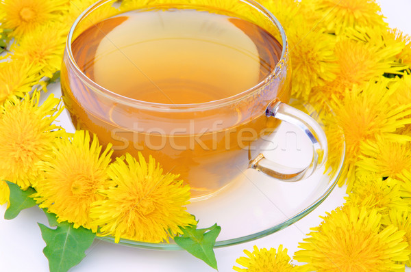 tea dandelion 06 Stock photo © LianeM