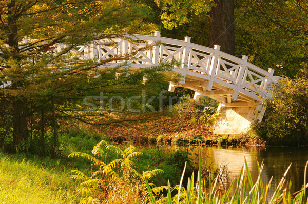 английский белый моста На 25 лист саду Сток-фото © LianeM