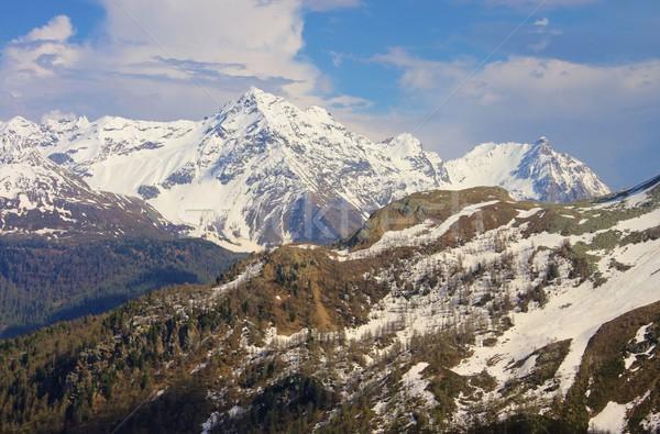 Bernina Range  Stock photo © LianeM