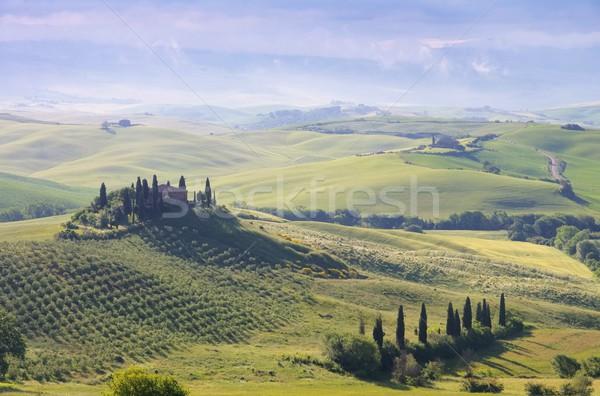 Toscana casa niebla árbol primavera paisaje Foto stock © LianeM