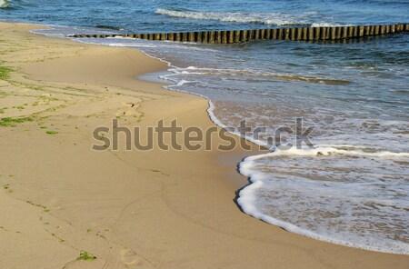 Mar báltico praia 24 natureza azul viajar Foto stock © LianeM