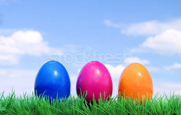 easter eggs on flower meadow and sky 01 Stock photo © LianeM