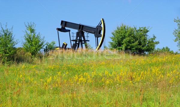 oil pump 02 Stock photo © LianeM