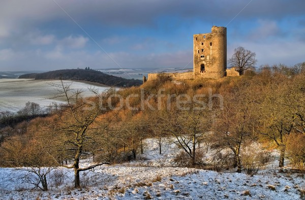 Arnstein castle ruin  Stock photo © LianeM