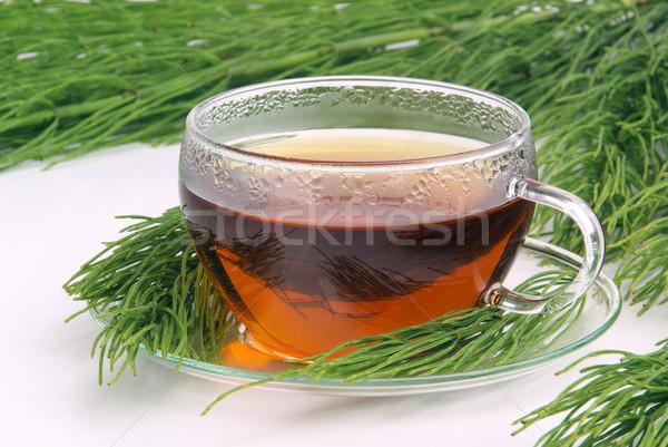 Stock photo: tea field horsetail 06