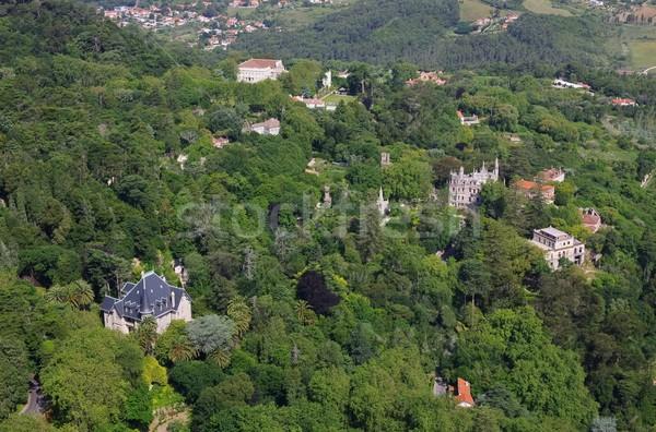 Lasu ogród zielone podróży zamek domów Zdjęcia stock © LianeM