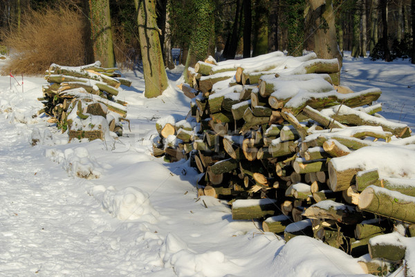 Holzstapel im Winter - stack of wood in winter 05 Stock photo © LianeM