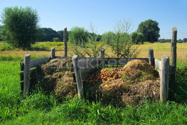 compost pile 07 Stock photo © LianeM