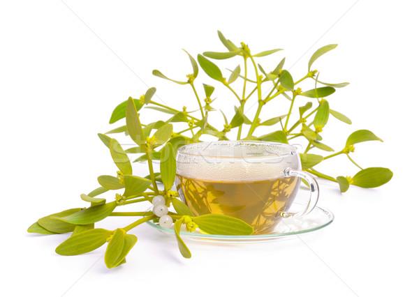 tea mistletoe 04 Stock photo © LianeM