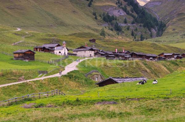 Fane Alp in Italy Stock photo © LianeM