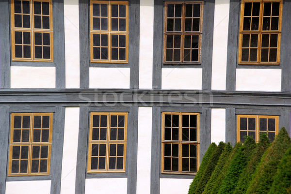 window timber framing 01 Stock photo © LianeM