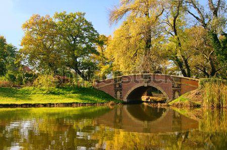 английский воды лист саду моста озеро Сток-фото © LianeM