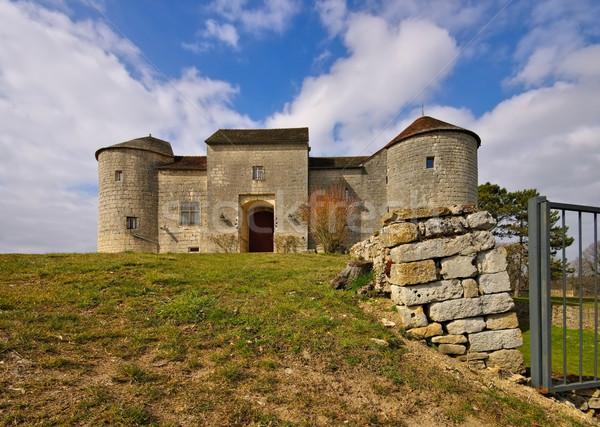 Chateau Mont-Saint-Jean in France Stock photo © LianeM