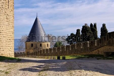 Castle of Carcassonne, France Stock photo © LianeM
