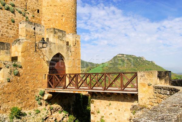Frias castle 11 Stock photo © LianeM