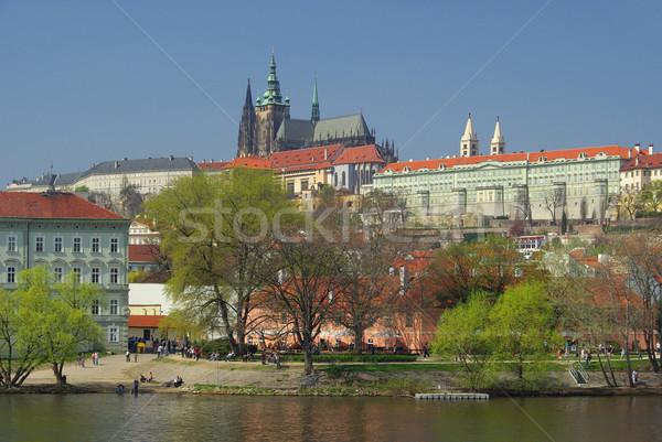 Prague cathedral 03 Stock photo © LianeM