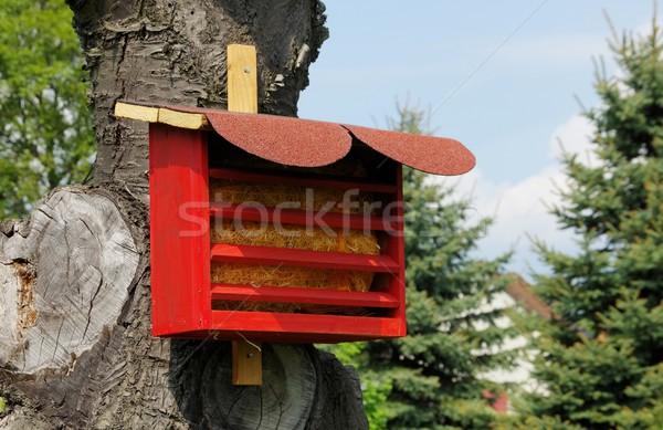 Insectos hotel verde casa árbol madera Foto stock © LianeM