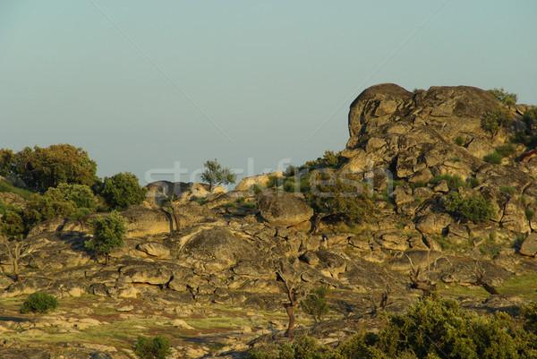Valencia de Alcantara granite rock landscape 02 Stock photo © LianeM