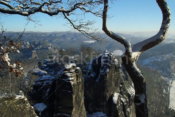 Bastei rock  Stock photo © LianeM
