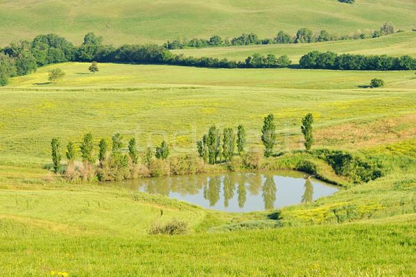 Toskana gölet su manzara alan yeşil Stok fotoğraf © LianeM