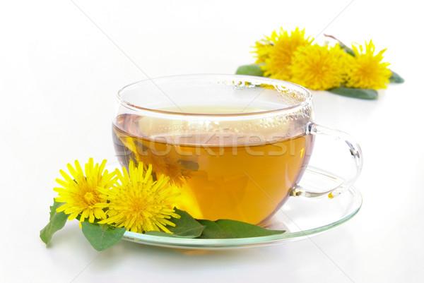 tea dandelion 02 Stock photo © LianeM