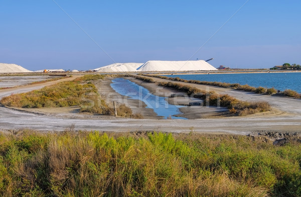 Saline in Camargue, France Stock photo © LianeM