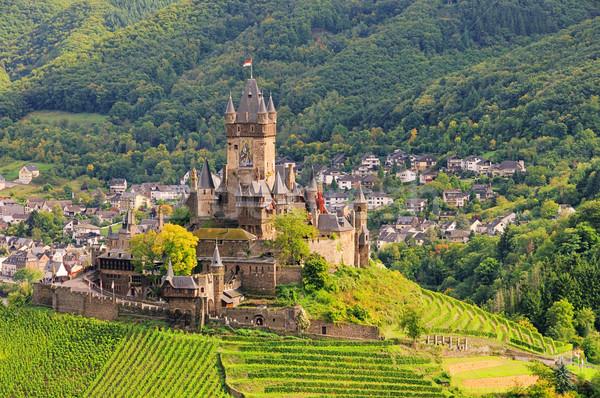 Castelo 15 floresta montanha gótico Foto stock © LianeM