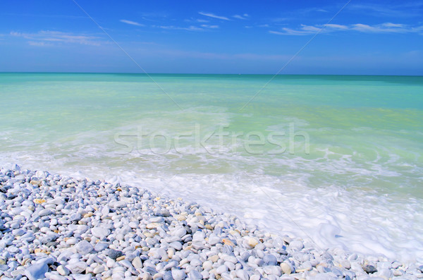 Pisa beach 04 Stock photo © LianeM