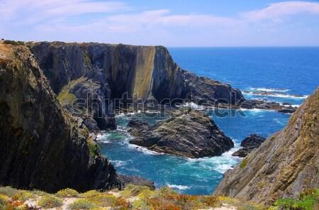Cabo Sardao coast  Stock photo © LianeM