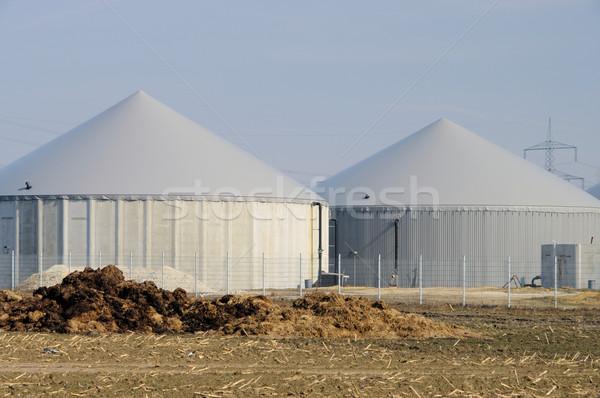 Biogáz növény mező gazdálkodás Stock fotó © LianeM