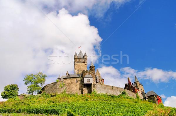 Castelo 12 floresta montanha azul gótico Foto stock © LianeM